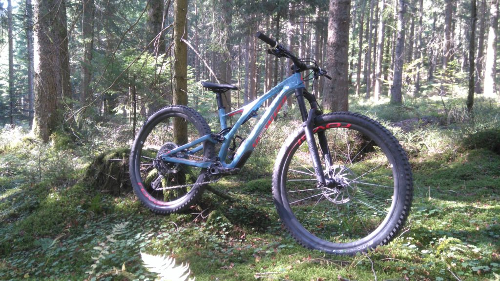 Specialized Stumpjumper 2019 vs Enduro 2014 – Two Guys One Van
